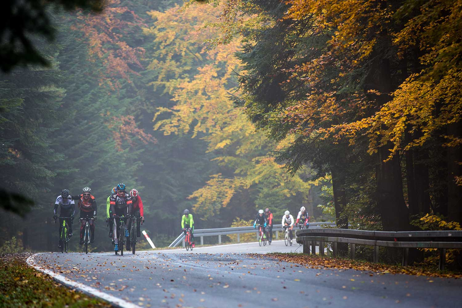Group of cyclists riding during the fall