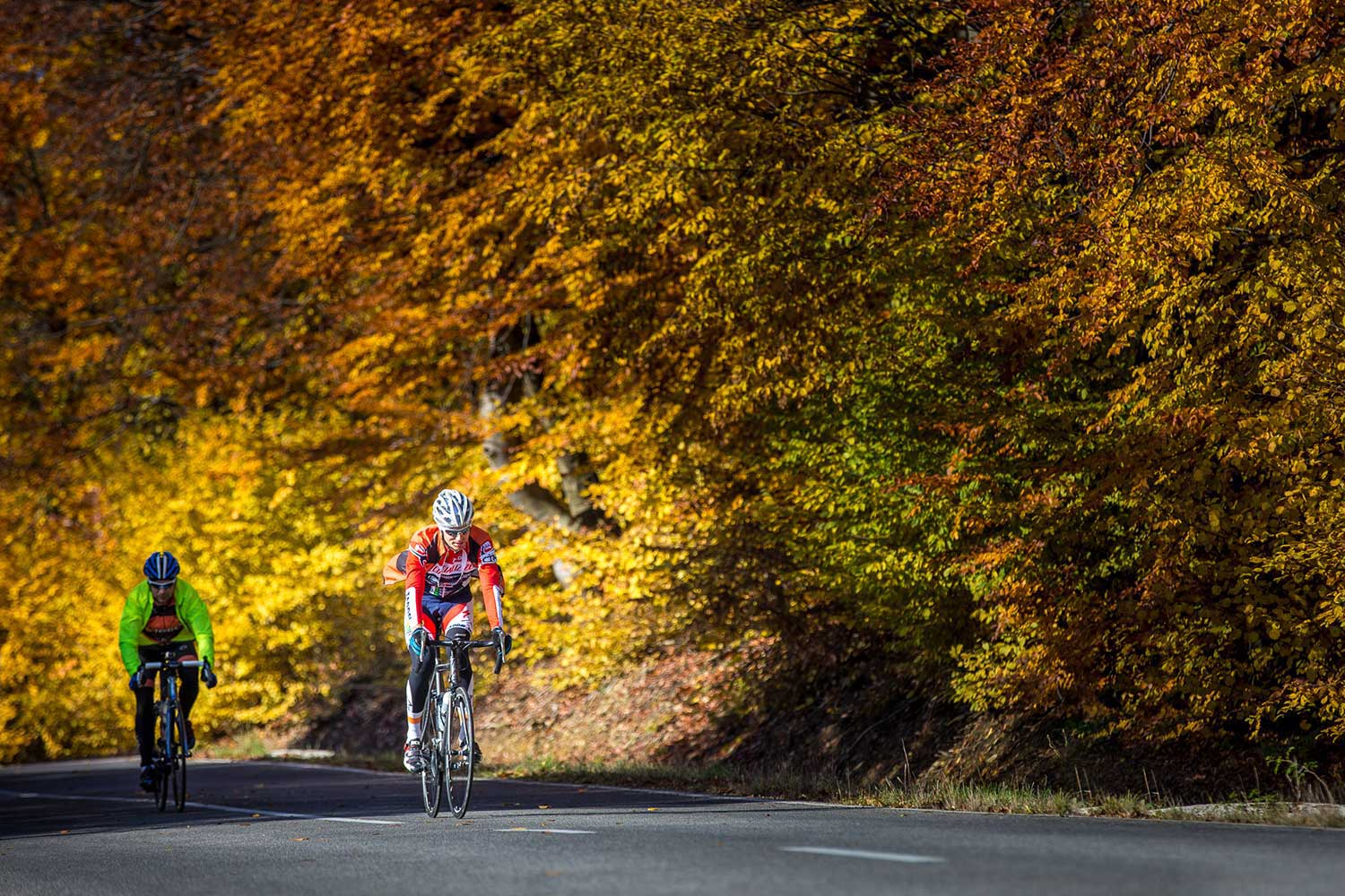 Should You do Cycling with a cold? | Cycling Tips | Cyklopedia